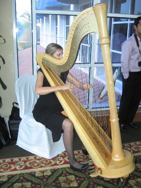 Harpist - Wedding Ceremony in Fort Lauderdale, FL